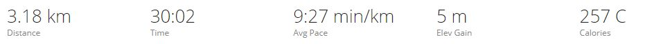 Image of runnng stats from garmin connect